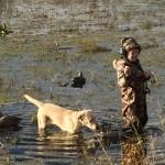 # Beausoutdoors Hemi @ 4 months Retreiving his first Duck